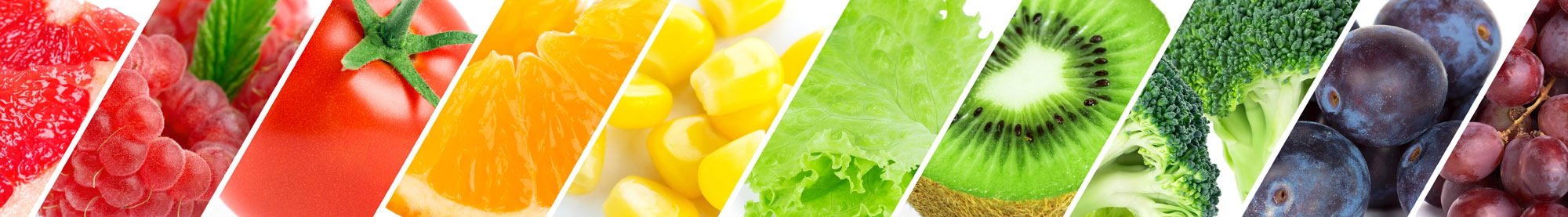 nutrition-diagonal-banner-cropped